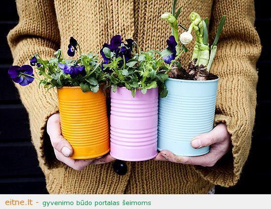Idėja namams: spalvingi vazonėliai iš skardinių