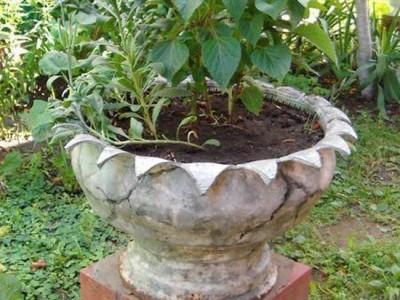 Papuoškite savo gėlių darželį… senomis padangomis