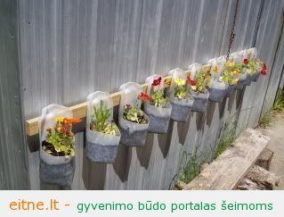 Sodininkavimas: mini sodas plastiko buteliuose