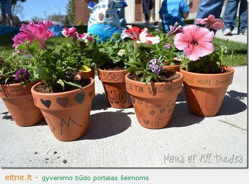 Idėja namams: grafiti vazonėliai
