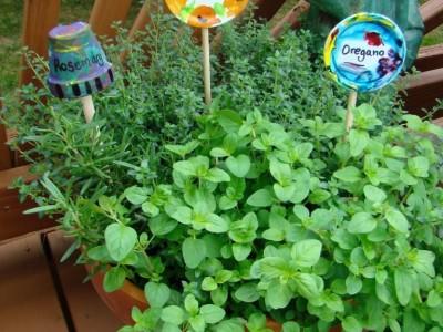 Darbeliai su vaikais: žaismingi sodo ir daržo žymekliai