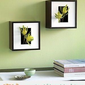 Idėjas namams: sieninės vazos