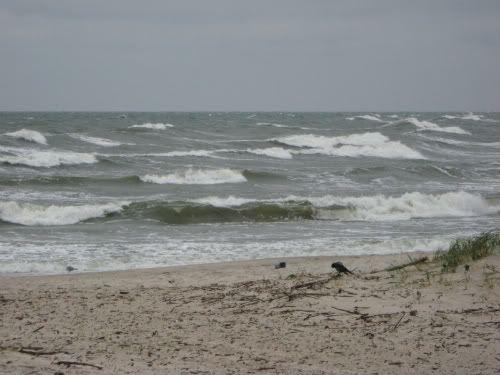 Sekmadienio popietė prie jūros