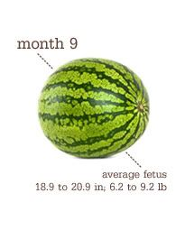 Nėštumas ir vaisiai