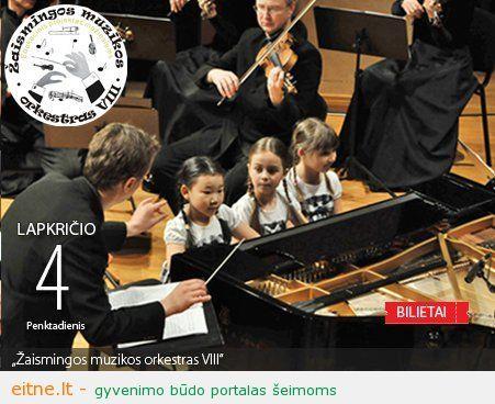 """Edukacinis projektas """"Žaismingos muzikos orkestras VIII"""""""