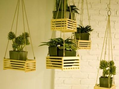 Idėja namams: kambarinių gėlių krepšiai