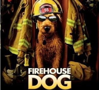 Filmas: Gaisrinės šuo (Firehouse Dog)