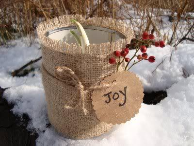 Gėlės žiemą