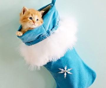 Idėja namams: Mėlynos Kalėdos