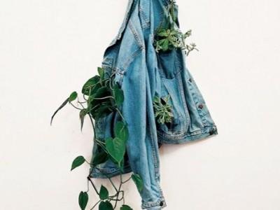 Kitoks augalų auginimo būdas