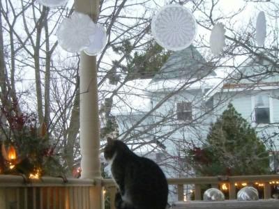 Idėja namams: ažūras lede