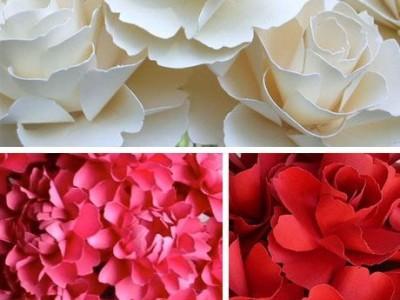 Valentino dienos idėja: milžiniška rožė