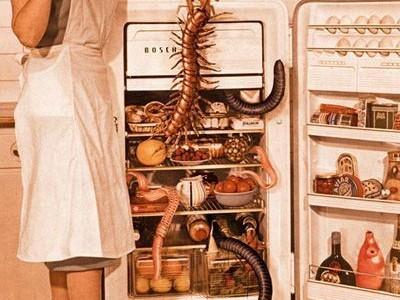Kaip užtikrinti tvarką šaldytuve
