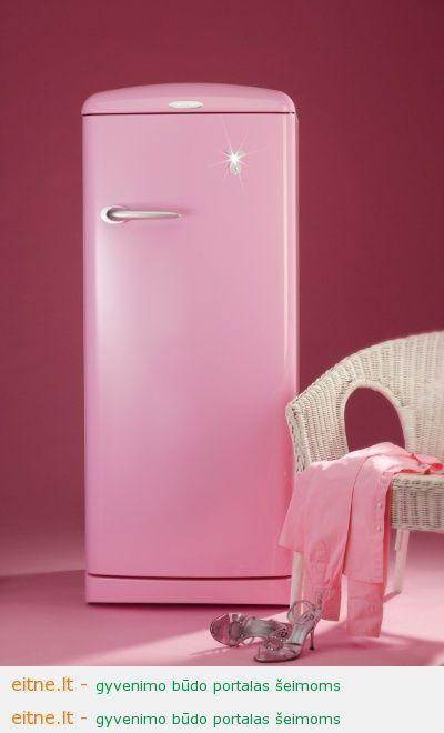 Buitinė technika namuose: šaldytuvas