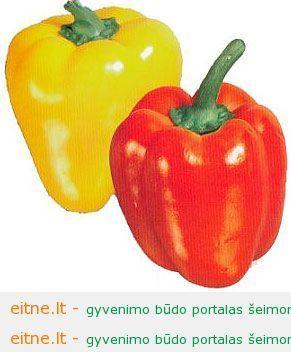 oimg_GC00387384_CA00387403